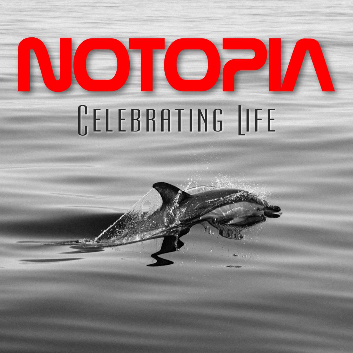 NOTOPIA - mennigmann com