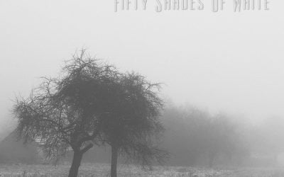 Fifty Shades Of White, a new NOTOPIA release